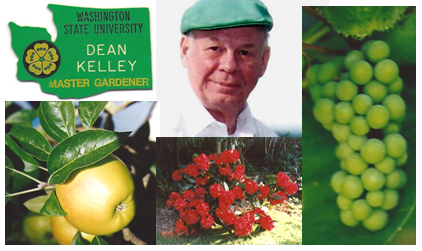 He grew grapes, apples, blueberries, rhododendrons and more!