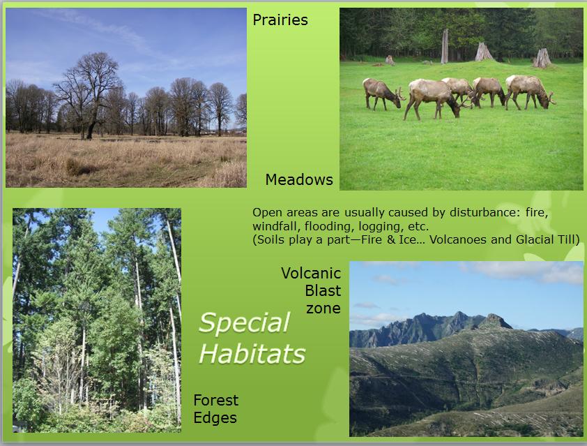 Special Habitats