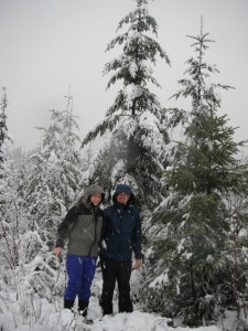 Picking out a Christmas Tree in Olympic National Forest